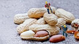 ich liebe den Duft von Erdnüssen